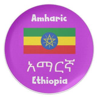 De Vlag van Ethiopië en het Ontwerp van de Taal Bord