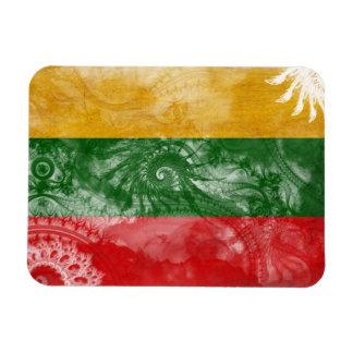 De Vlag van Litouwen Magneet