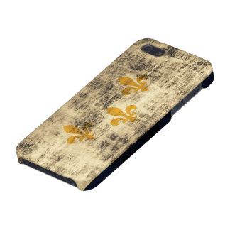 De Vlag van New Orleans van Grunge iPhone 5 Hoesje