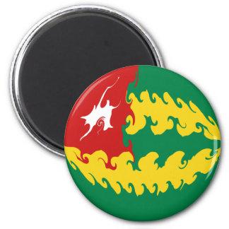 De Vlag van Togo Gnarly Magneet