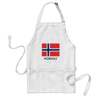 De vlagBBQ van Noorwegen keukenschort voor man en Standaard Schort
