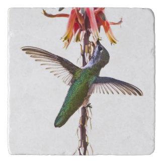 De vleugels van de kolibrie trivet