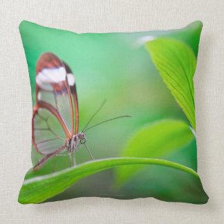 De vleugelvlinder van het glas het ontspannen op kussen