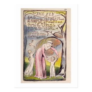 """De """"vlieg"""", plateert 37 van 'Liederen van Onschuld Briefkaart"""