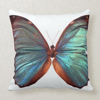 De vlinder met vleugels spreidde 2 uit kussen