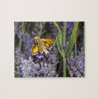 De vlinder van de kapitein op lavendelbloesem puzzels