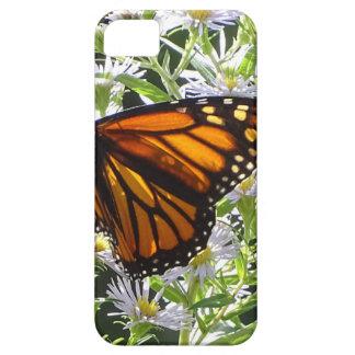 De Vlinder van de monarch Barely There iPhone 5 Hoesje