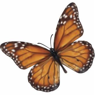 De Vlinder van de monarch Fotobeeldje Sleutelhanger