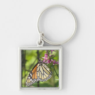 De Vlinder van de monarch keychain Sleutelhanger