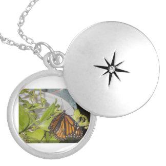 De vlinder van de Monarch Locket Ketting
