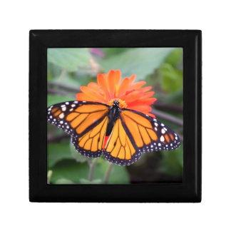 De vlinder van de monarch op oranje bloem decoratiedoosje