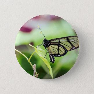 De Vlinder van de Vleugel van het glas Ronde Button 5,7 Cm
