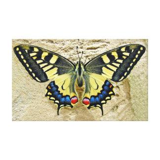 De Vlinder van Swallowtail van de tijger op Zand Canvas Afdruk