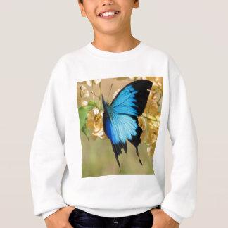 De Vlinder van Ulysses Trui