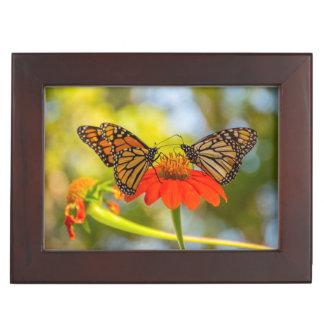 De Vlinders van de monarch op Wildflowers Bewaardoosje