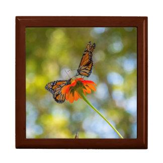 De Vlinders van de monarch op Wildflowers Decoratiedoosje