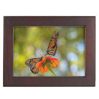 De Vlinders van de monarch op Wildflowers Herinneringen Doosje