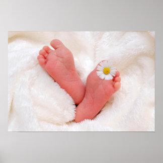 De Voeten van het baby met Daisy Poster