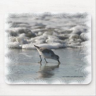 De Vogel Mousepad van het strand Muismat