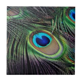 De Vogel Peafowl van de pauw Tegeltje