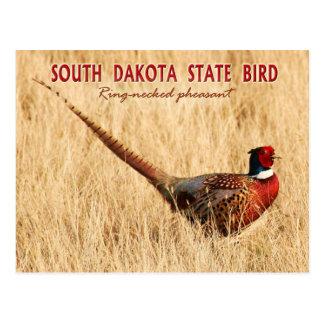 De Vogel Staat van de Zuid- van Dakota: Briefkaart