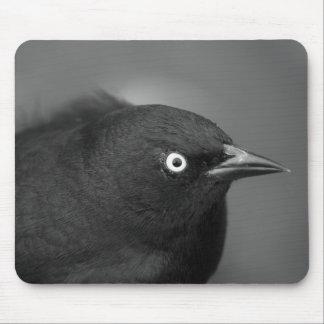 De vogel van Alfred Hitchcock Muismatten