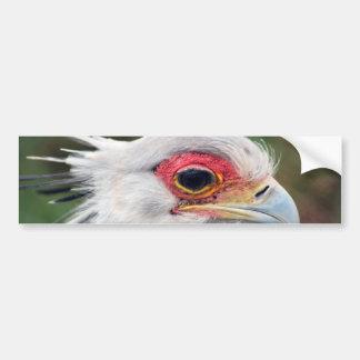 De Vogel van de secretaresse van Zuid-Afrika Bumpersticker