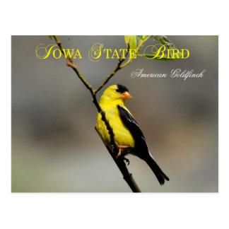 De Vogel van de Staat van Iowa - Amerikaanse Briefkaart