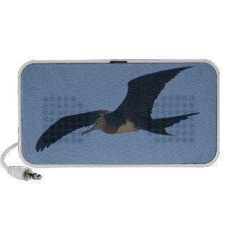 De Vogel van het fregat iPod Luidspreker