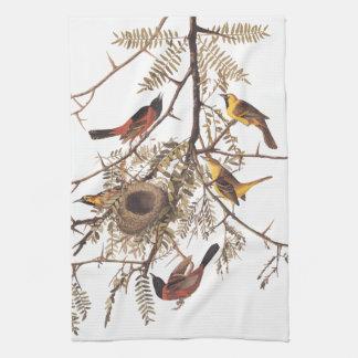 De Vogels die van Oriole van de Boomgaard van Theedoek