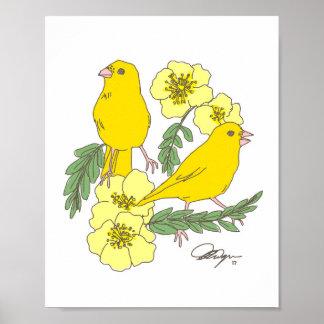 De vogels van de kanarie & de rozen van de poster