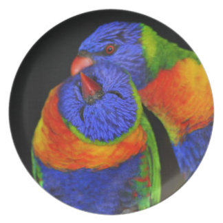 De Vogels van de liefde Melamine+bord