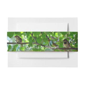 De vogels van de liefde op een de buikband van de uitnodigingen wikkel