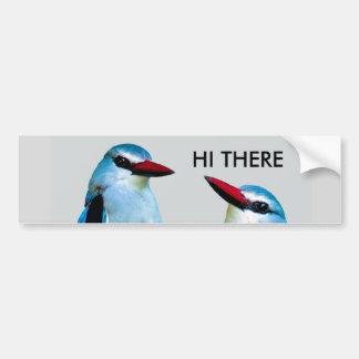 De Vogels Zuid-Afrika van de ijsvogel Bumpersticker