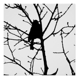 De Vogelwaarneming van de Liefde van het Silhouet Poster