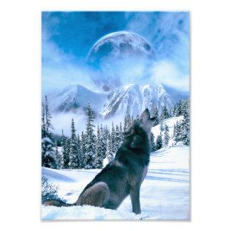 De Vraag van de wolf Foto Kunst