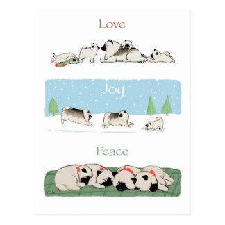 De Vrede van de Vreugde van de Liefde van Keeshond Briefkaart