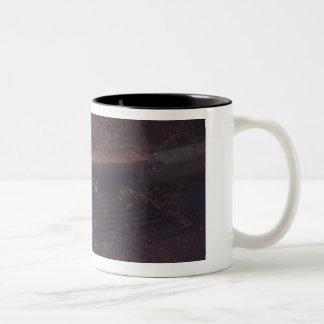 De Vrienden van de wasbeer Tweekleurige Koffiemok