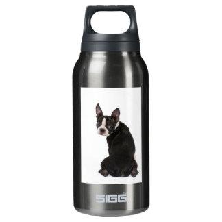 De Vrijheid van Boston Terrier Geïsoleerde Waterfles