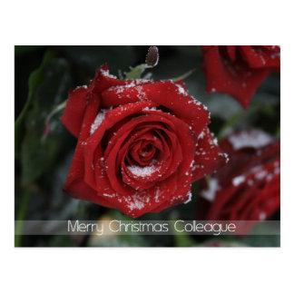 De Vrolijke Kerstkaart van de collega Briefkaart