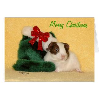 De Vrolijke Kerstkaart van het Proefkonijn van het Briefkaarten 0