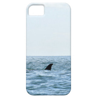 DE WALVIS MACKAY QUEENSLAND AUSTRALIË VAN DE BARELY THERE iPhone 5 HOESJE