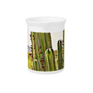 De Waterkruik van het Porselein van de Cactus van Pitcher
