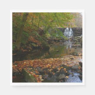 De Waterval van de herfst en de Foto van de Natuur Papieren Servetten