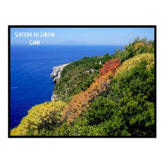 De weg van deifortini van Sentiero - Capri, Briefkaart