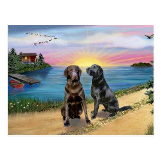 De Weg van het meer - Twee Labradors (choc-Blk) Briefkaart
