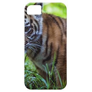 De Welp van de Tijger van Sumatran van huren Barely There iPhone 5 Hoesje
