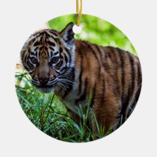 De Welp van de Tijger van Sumatran van huren Rond Keramisch Ornament