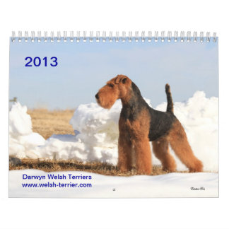 De Welse Kalender van Terrier 2013 door Darwyn