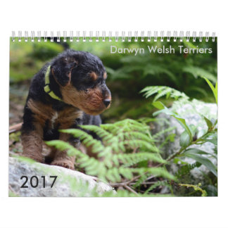 De Welse Kalender van Terrier 2017 door Darwyn